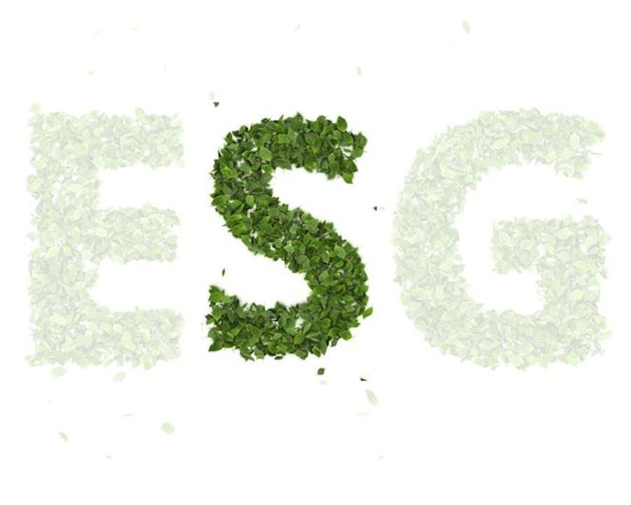 ESG-Social