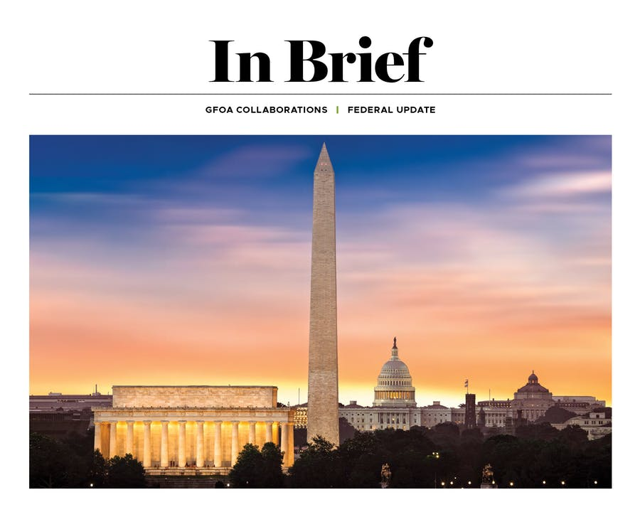 In Brief: 2021 Federal Outlook