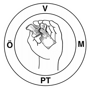 GiZ Partner - OEVMPT