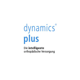 GiZ Partner - dynamics plus