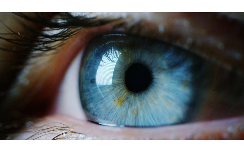 David Haintz - Value Through the Client's Eyes