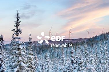 EDF logo on snowy landscape backdrop