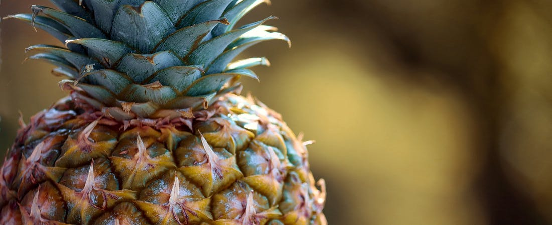A close up on a fresh pineapple