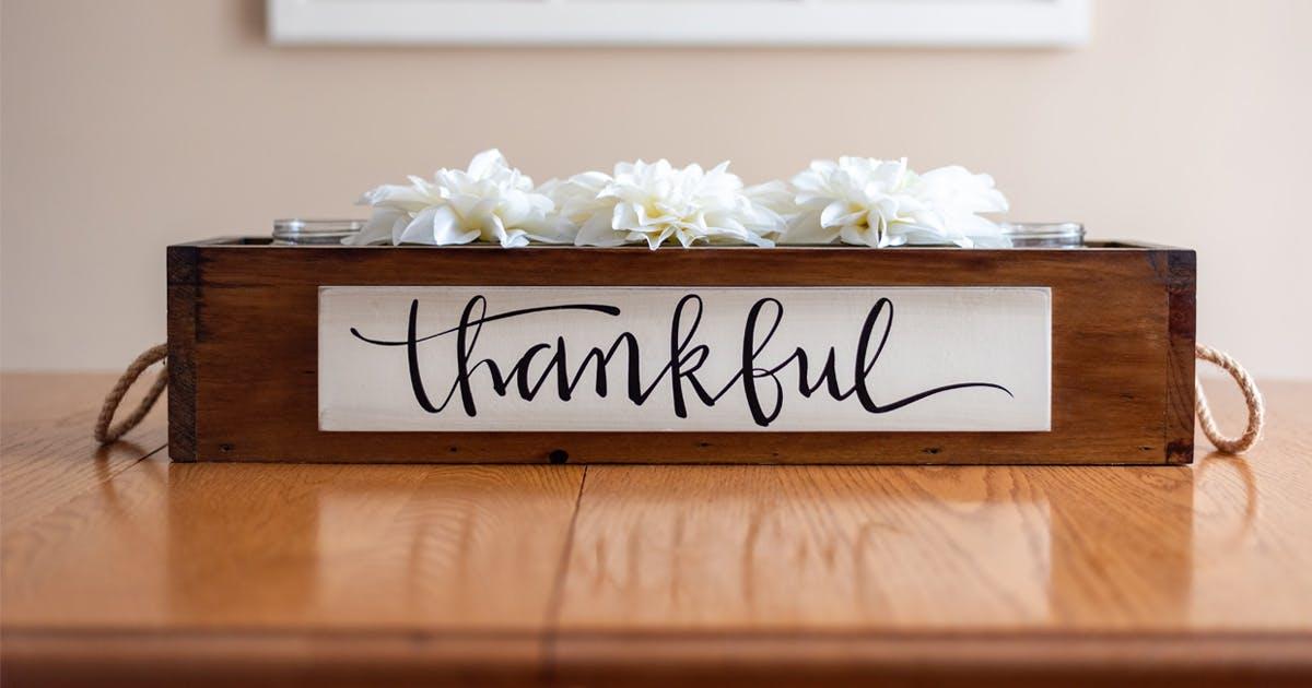 Jela's Journey of Gratitude