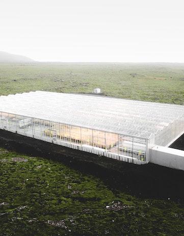 ORF Genetics greenhouse
