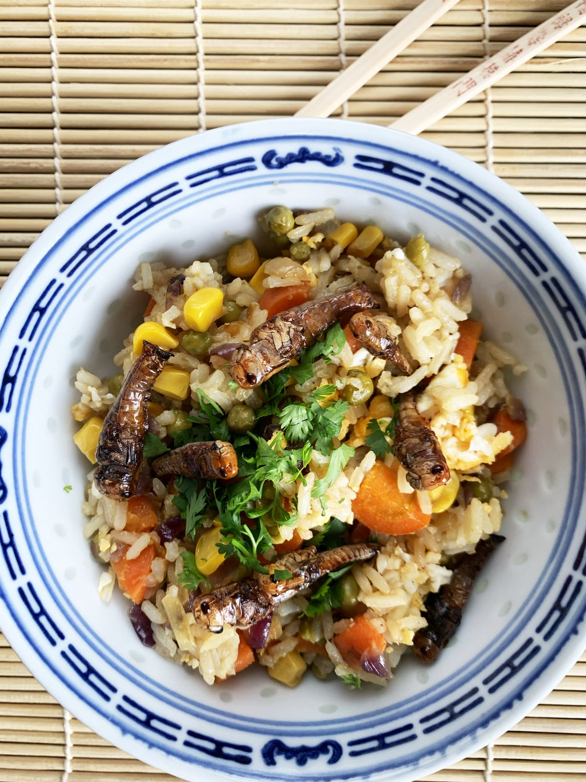 Fried rice topped with grasshoppers