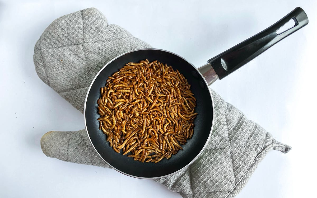 Mealworms ready to be fried in a pan