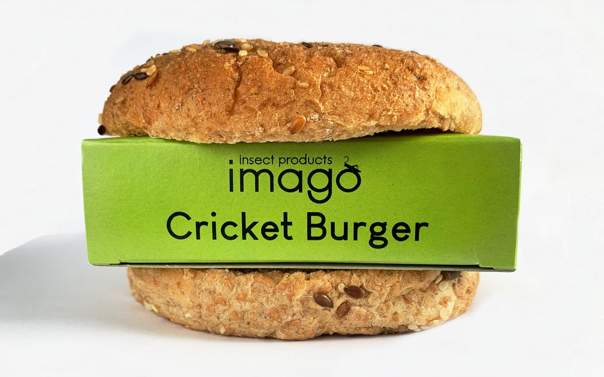 Imago Cricket Burger
