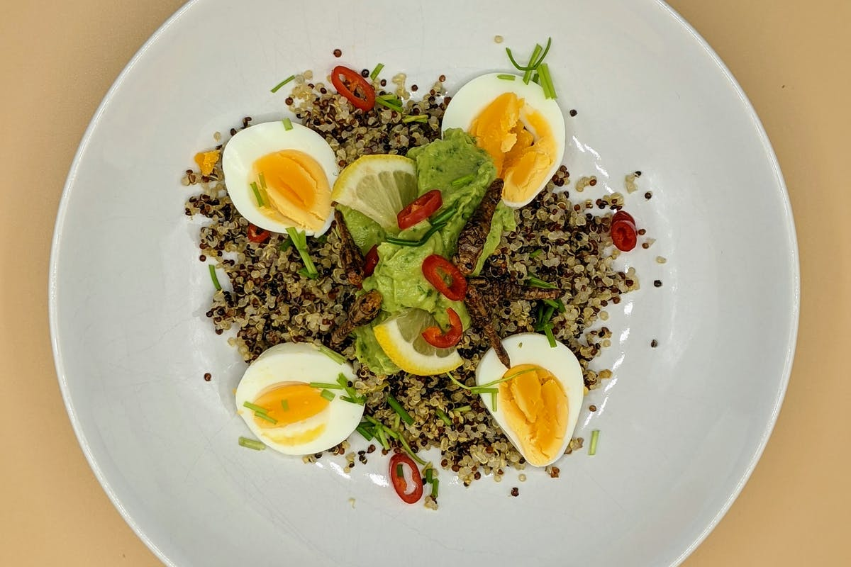 Spicy Grasshopper Egg Salad on a plate