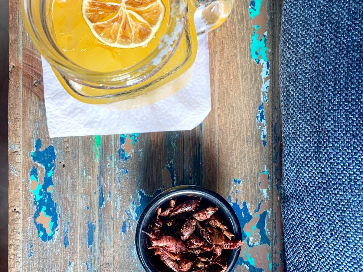 Crickets in a bowl and a jar of lemonade