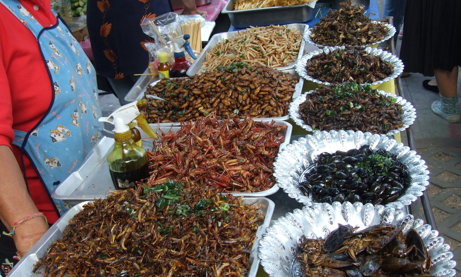 Market stall with insects in Thailand