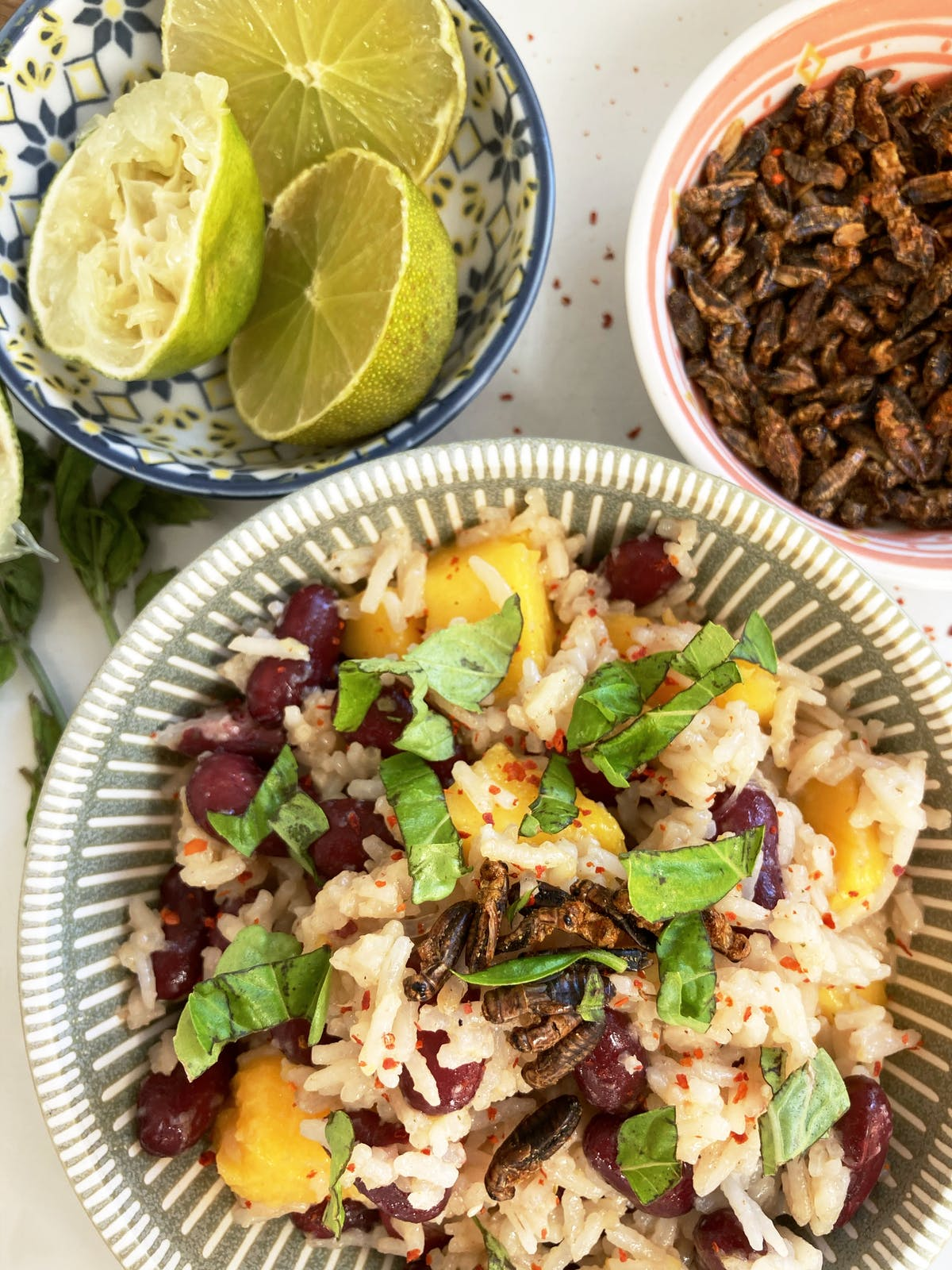 Thai Mango Sticky Rice with Roasted Insects and Lime in separate bowls