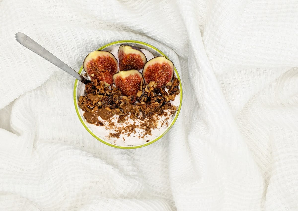 Mealworm Granola brekky bowl on a blanket