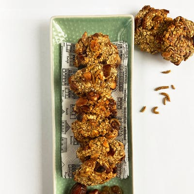 Top view of mealworm oatmeal cookies on a tray
