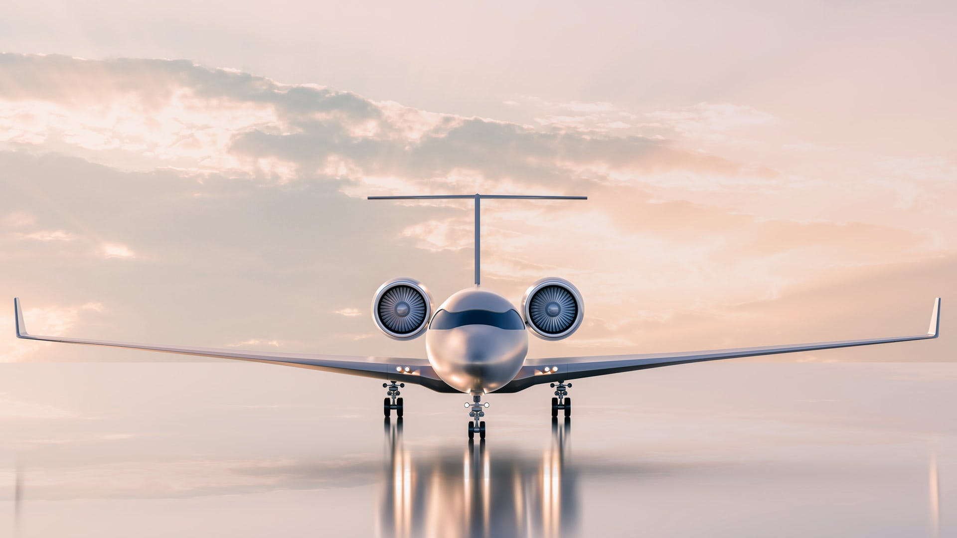 Choose a private charter to get your business associates to their destinations quickly and safely.