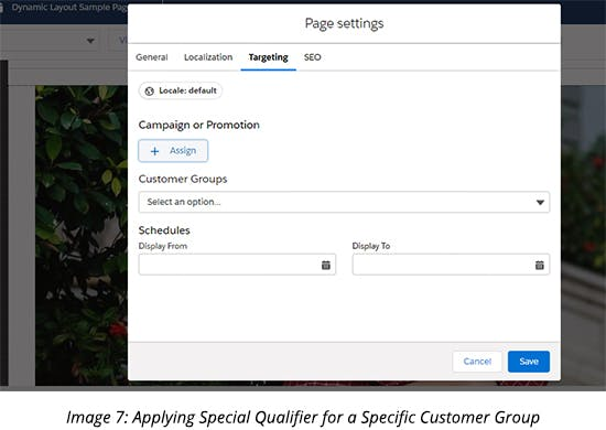 Applying Special Qualifier for a Specific Customer Group