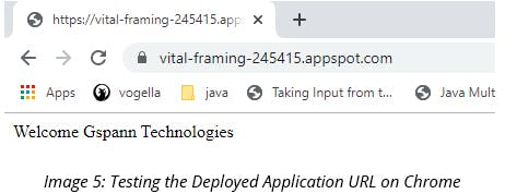 Testing the deployed application URL on Chrome