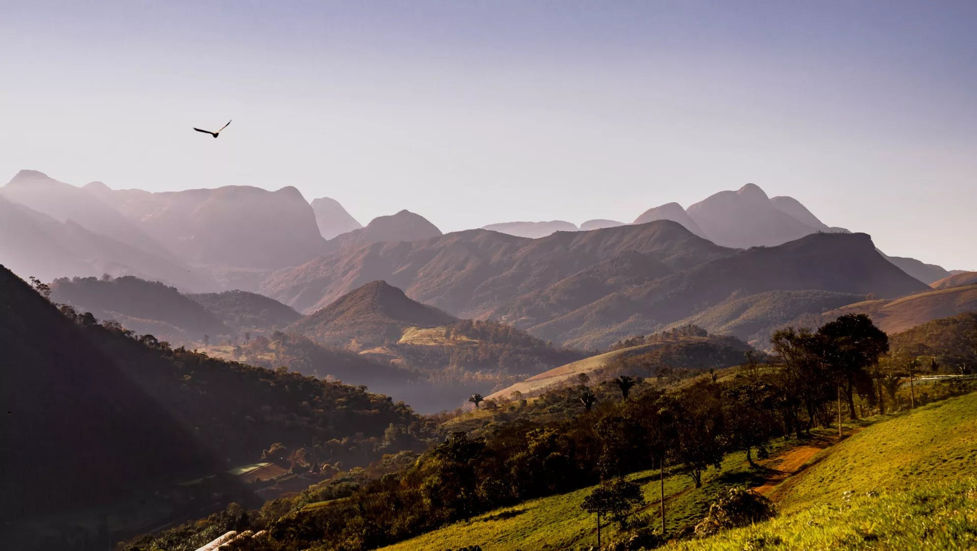 Imagem do projeto Del Paraíso Residencial