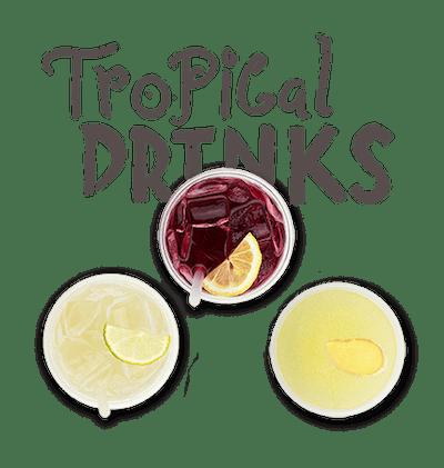Tropical Drinks - Hibiscus Lemonade Pineapple Ice Lilikoi-Lime Soda