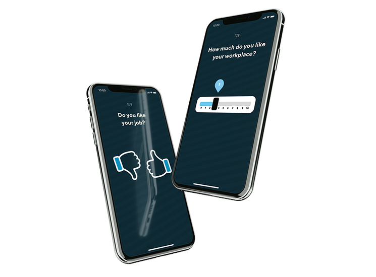 Two mobile phones showing the survey