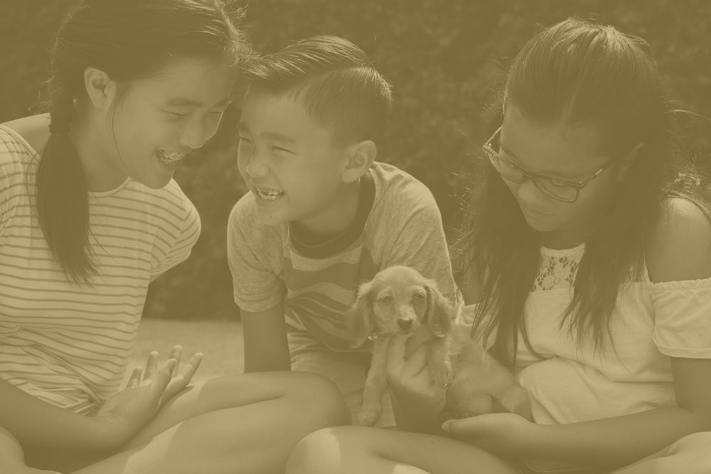 three children sitting down and laughing while holding a puppy