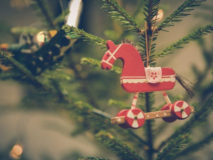 Verzorging Kerstboom.Zo Blijft Je Kerstboom Langer Mooi Goed Gevoel