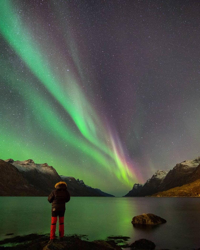 A man observe the colourful aurora over the mountain and sea by @hammer_foto