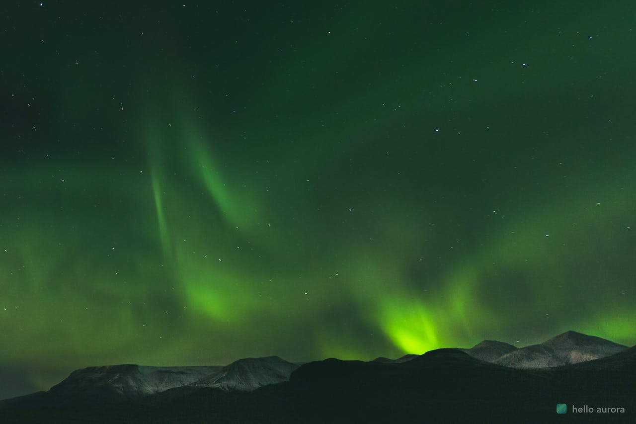 20 Aurora Borealis Facts You will Love to Know's cover picture
