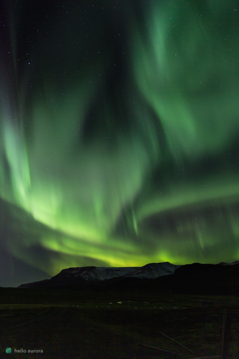 Curtain aurora shaped dancing in the sky