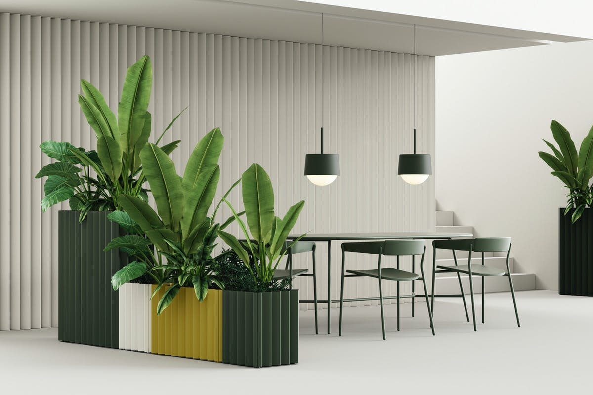 New biophilia possibilities + lighting with a twist