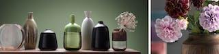 Blumenvasen in verschiedenen Formen und Farben vor grüner Wand