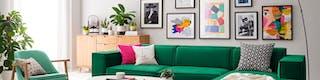 Grünes Sofa mit bunten Kissen vor grau gestrichener Wand mit eingerahmter Bildersammlung sowie Sessel, dekorativer Pflanze und Sideboard aus hellem Holz