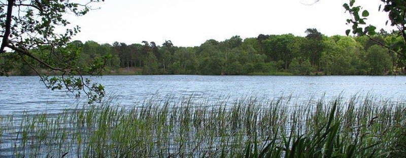 Visit Fritton Lake