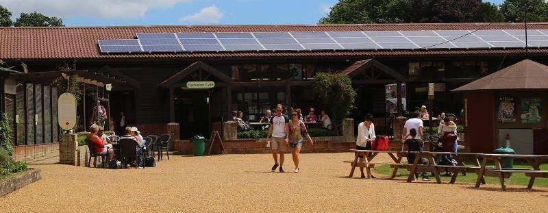 Thrigby Hall Wildlife Gardens near Great Yarmouth