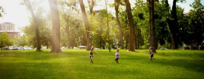 Children flying a kite in the park