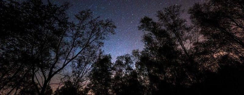 Galloway Forest UK stargazing spot