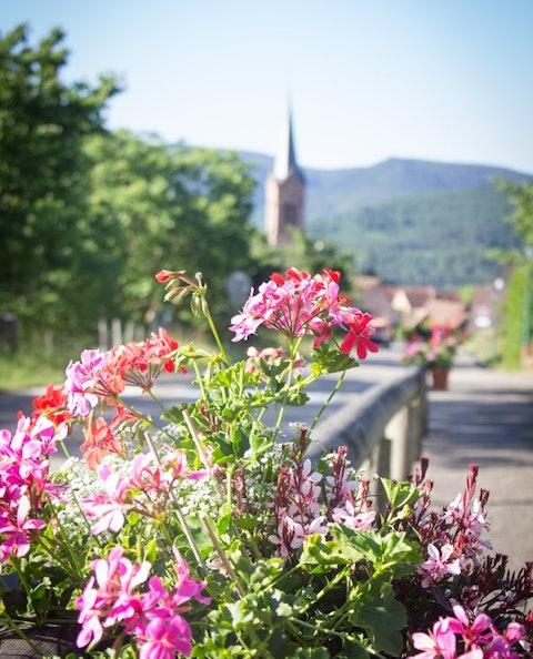 Panorama sur le petit village de Breitenbach, en Alsace