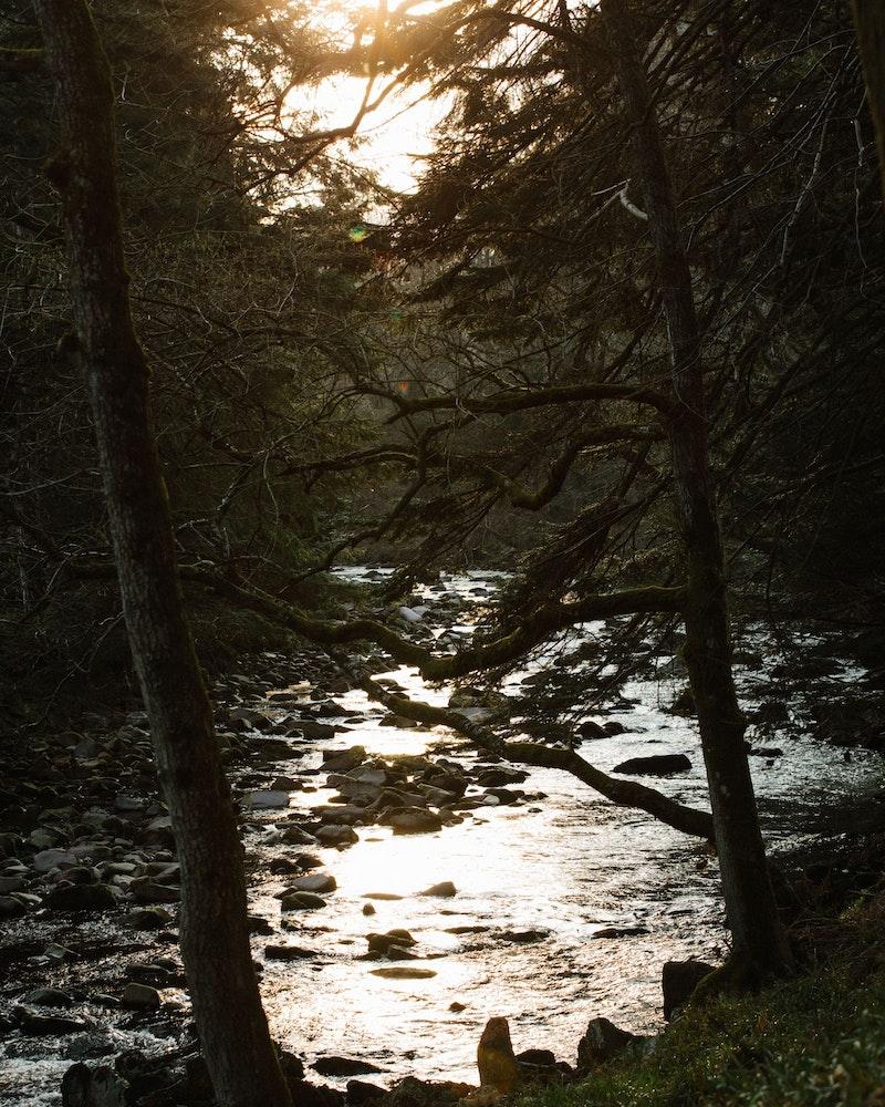 River Dye swim