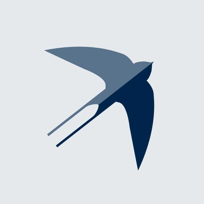 Swallow Image