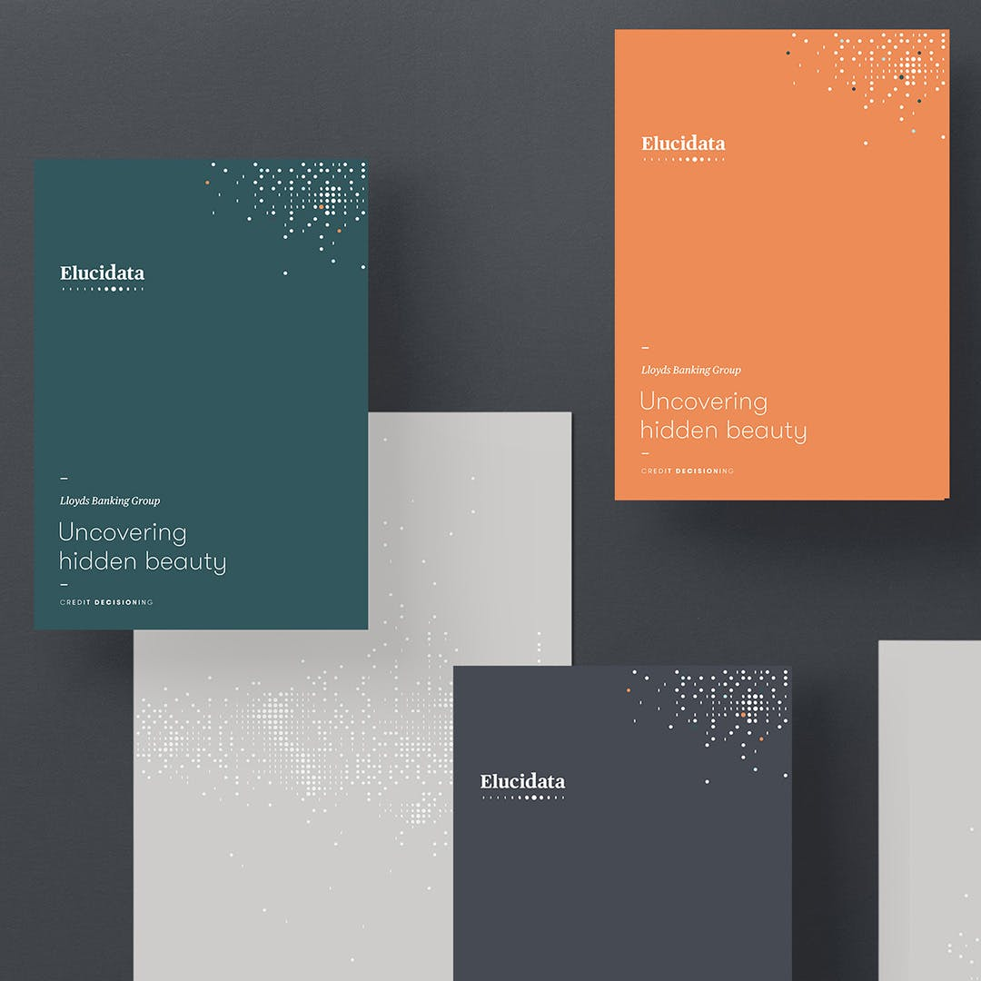 Elucidata Brand Identity & Website