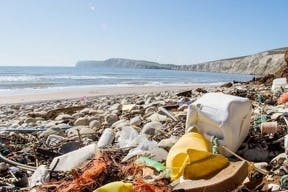 AI can reduce marine litter