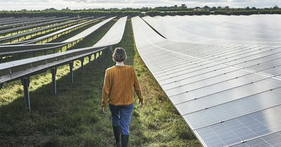 IBM and Raise Green team up to combat climate change