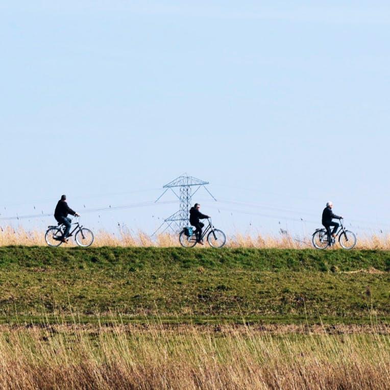 Drie fietsers