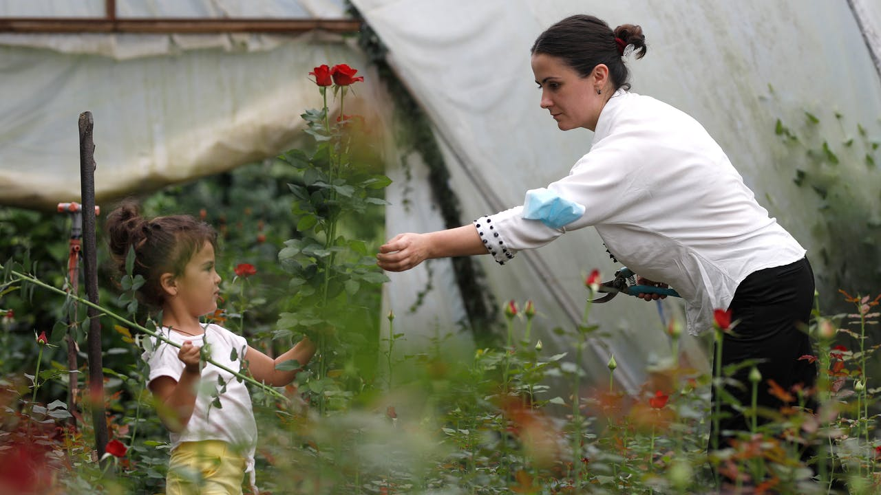 Mariam Kobalia is in the greenhouse with her young daughter, who holds some red roses.