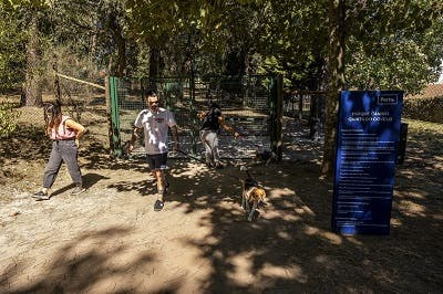 parque canino quinta covelo
