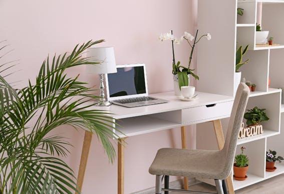 escritório em casa decorado com plantas e flores