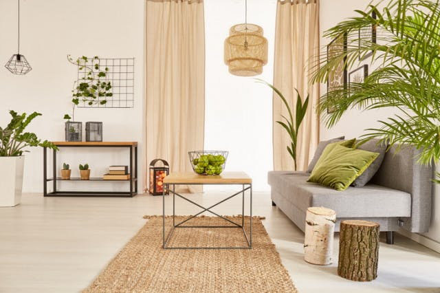 Traga a natureza para dentro da sua casa
