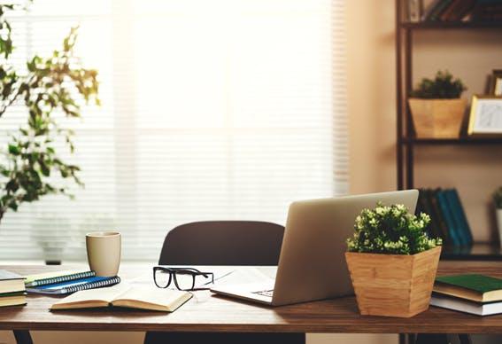 escritório em casa, com iluminação natural, livros e plantas
