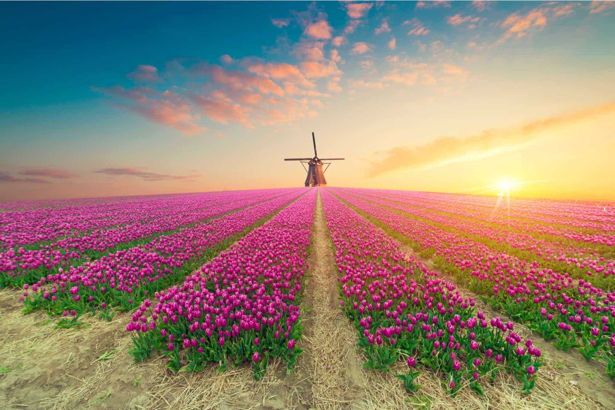 Aluguer de Autocaravanas na Holanda