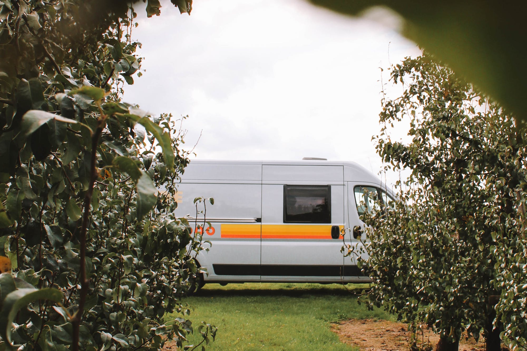RV seen between planted trees